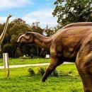 """Наскоро отворање на новиот """"Дино парк"""" во Зоолошка"""