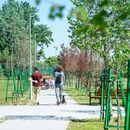 Нов парк и зелени површини во Кисела Вода