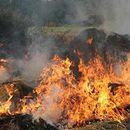 За 23 дена-28 пожари на отворено во скопско, кој ги потпалува?