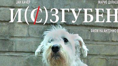 """Проекција  на """"И(с)згубени"""" во МКЦ на 28 мај"""