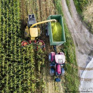 Доклад: В България систематично се злоупотребява с аграрните субсидии от ЕС
