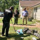 Georgia family finds massive alligator 'sunning himself' in front yard