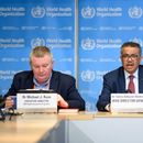 Coronavirus: WHO officials urge global cooperation, say they can't 'assume' spread will slow in warm weather