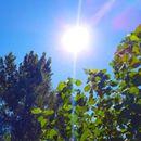 Danas sunčano, do 30 stepeni