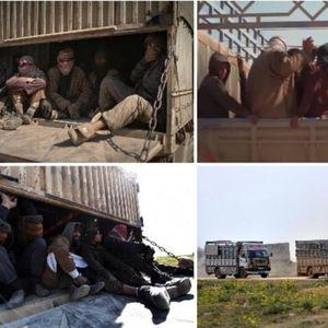 Ги покривале хеликоптери и војници: Американската коалиција ги извлекла џихадистите на ИСИС од Сирија, а еве каде ги одвеле и ги пуштиле на слобода