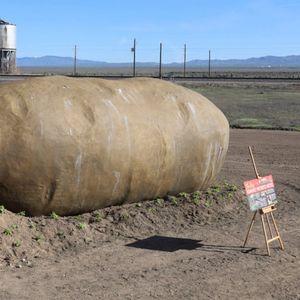 Собата во облик на огромен компир во која можете да преноќите стана вирален хит