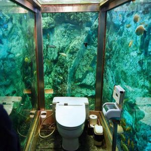 Тоалет во јапонско кафуле со вредност од 270.000 долари