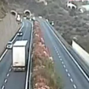 Избегната трагедија во Италија: Пијан возач на камион возел во спротивна насока цели три километри!