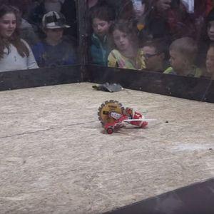 Јутјуб избришал снимки од борби со роботи поради – суровост кон животните