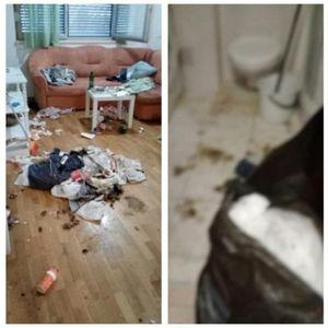 Го издале станот на мајка со дете, а потоа затекнале чудо откако се иселила - низ целиот стан имало ѓубре и фекалии