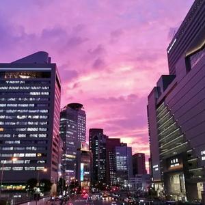 Јапонците ги воодушеви прекрасното виолетово небо, а потоа - катастрофа!
