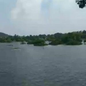 Мртвото езеро почна да се буди: Ја вратиле водата на подрачјето кое беше убиено од суша, а еве како го направиле тоа...