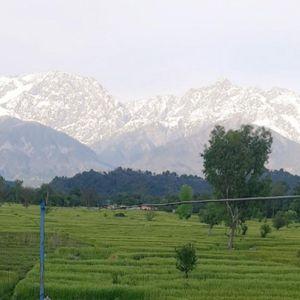 Хималаите се гледаат прв пат по 30 години: Опаднало нивото на смог, прекрасната глетка може да се види и од 200 километри оддалеченост