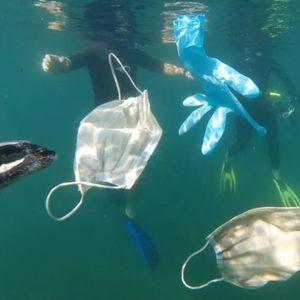 Нова закана за природата: Во морињата и океаните веќе плутаат заштитни маски и ракавици