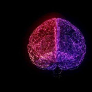 Колку е силен вашиот мозок? Овој тест открива дали вашите сиви клетки се активни или остарени и потрошени