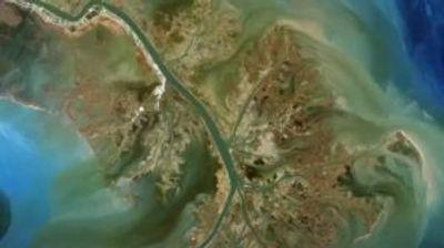 """Најголемата """"мртва зона"""" може да се појави во Мексиканскиот залив"""
