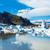 Арктичкиот вечен мраз се топи 70 години порано од очекувањата на научниците