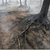 Невронски мрежи ги спасуваат сибирските шуми по пожарите и нелегалната сеча