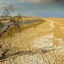 Француски климатолози предвидуваат зголемување на температурата за 7 степени до 2100.