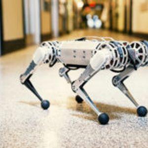 Mini Cheetah: Роботи во есенска прошетка