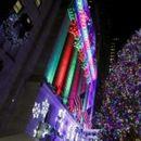 """Во Њујорк поставена елка со три милиони """"Сваровски"""" кристали"""