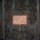 Совршено сочуван римски мозаик откриен под лозје во Италија