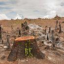 Ни остануваат уште само 40 години живот на планетата, тврдат научниците (ВИДЕО)
