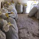 Италијанската полиција заплени 11 кг хероин прошверцуван преку Албанија