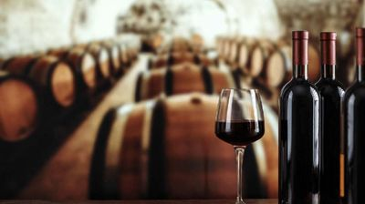 Kakvo je vino frankovka?