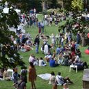 Wine Garden: Vinska oaza radosti i uživanja