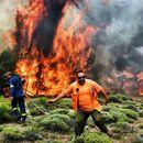 ВИДЕО - Бројот на загинатите од пожарите во Атина се искачи на 81