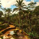 Bali angažuje 4.400 influensera za promociju turizma