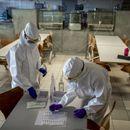 Cena PCR testa za strane državljane biće smanjena