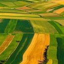 Povoljni krediti mladim poljoprivrednicima za kupovinu zemljišta