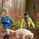 Samo pola sata jesenje šetnje dovešće vaše zdravlje i izgled do savršenstva