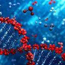 Otkriveni tragovi misteriozne ljudske vrste: Njihovi geni i danas žive u ljudima