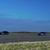Stiže nova trka ubrzanja, BMW, Audi, Porsche, Mercedes... VIDEO