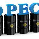 ОПЕК: Не може самостојно да бидеме одговорни за проблемите во нафтената индустрија