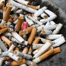 Над 22 милиони долари е годишниот увоз на цигари во земјава!
