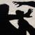 Во Гостивар тепачка, полиција смирувувала со истрели во воздух