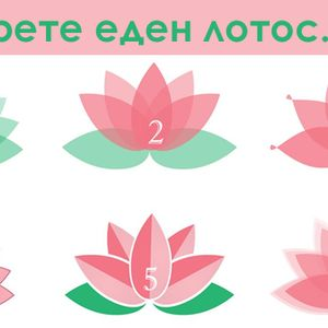 Квиз: Изберете омилен лотос цвет - ќе го добиете советот што ви е потребен сега