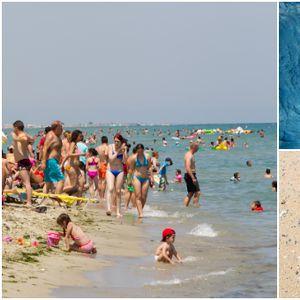 Апел до туристите во Грција – Зошто не треба да ги вадите и убивате медузите?