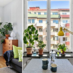 Како Скандинавците живеат во 24 метри квадратни и уживаат во тоа?