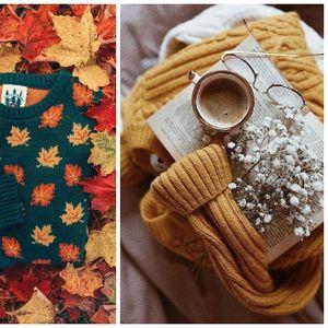 Водич: Како оптимистично да ги започнете есенските денови и обврски?