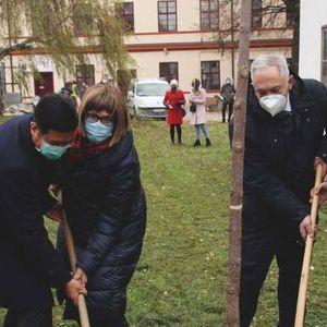 Ministarka: Uprkos epidemiji, budžet Srbije za kulturu biće blago uvećan