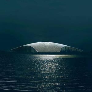 Зграда Кит- необична градба во слава на китови!