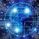 Brejdi: Veštačka inteligencija neće zameniti ljude