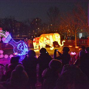 OTVOREN FESTIVAL SVETLA Novi Sad prvi put slavi Kinesku novu godinu