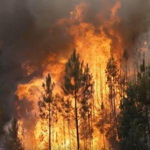 UOPŠTE IM NIJE LAKO: Nove muke za užičke vatrogasce, veliki broj požara bukti u Zapadnoj Srbiji (FOTO/VIDEO)