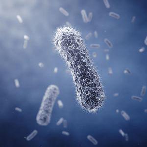 NADLEŽNI U SRBIJI IZDALI STRAVIČAN APEL, PAZITE NA OVO! Na granicama pojačane kontrole zbog koronavirusa!